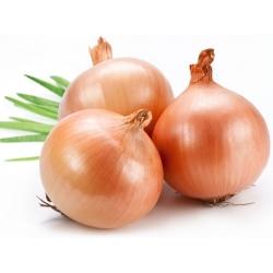 Onion <japan >, Product Of Hokkaido, Best Of Sarada, India/ Bangladeshi Flavor