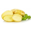 Potato cut  ( Frozen , Cleaned ,Peeled )  ( Ready to cook )