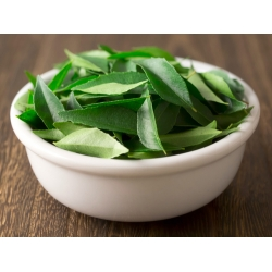 Curry Leaf (Frozen)