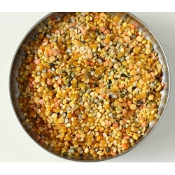 Dal mix , red lentils, ,chana dal,mug dal ,urad dal,toor dal ,Peeded,and split with husk and whole,