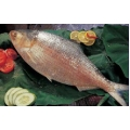 Hilsha fish whole . 800  gm - 1000 gm . Per kg 1895 yen . Price Variable Depending on Weight .